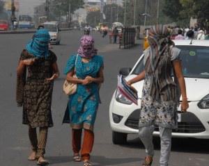 Hyderabadi women on a sunny day