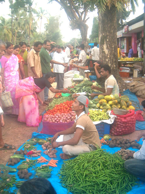 The Friday santhe (market) at Parkala